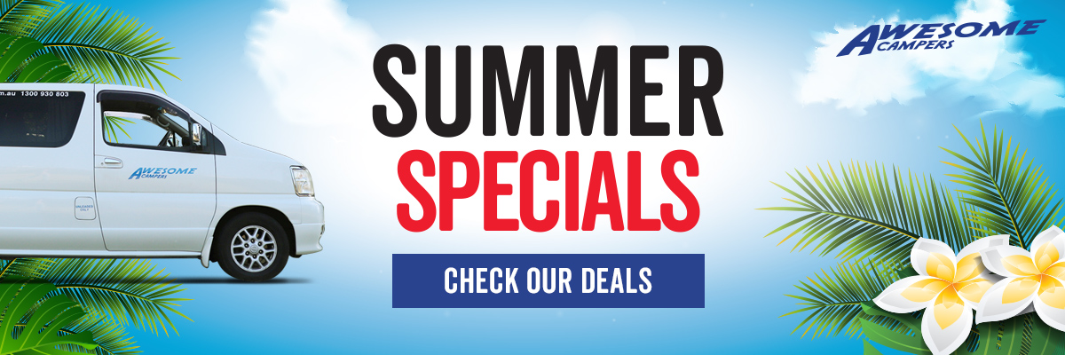 Awesome Summer Specials